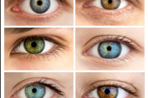 a0dca7d02 Hnědé oči získávají svou barvu díky melaninu, stejnému pigmentu, který  dodává barvu i pokožce. Modré oči ale žádný modrý pigment neobsahují.
